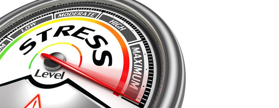 Stress Meter: 5 Daily Tips To Reduce Stress and Lower Cortisol Levels